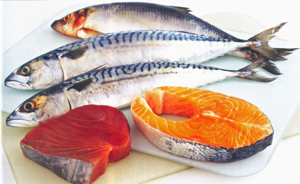 Salmon, Tuna and Mackerel