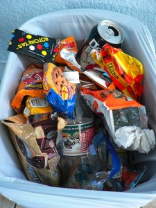 Junk Food in Trash