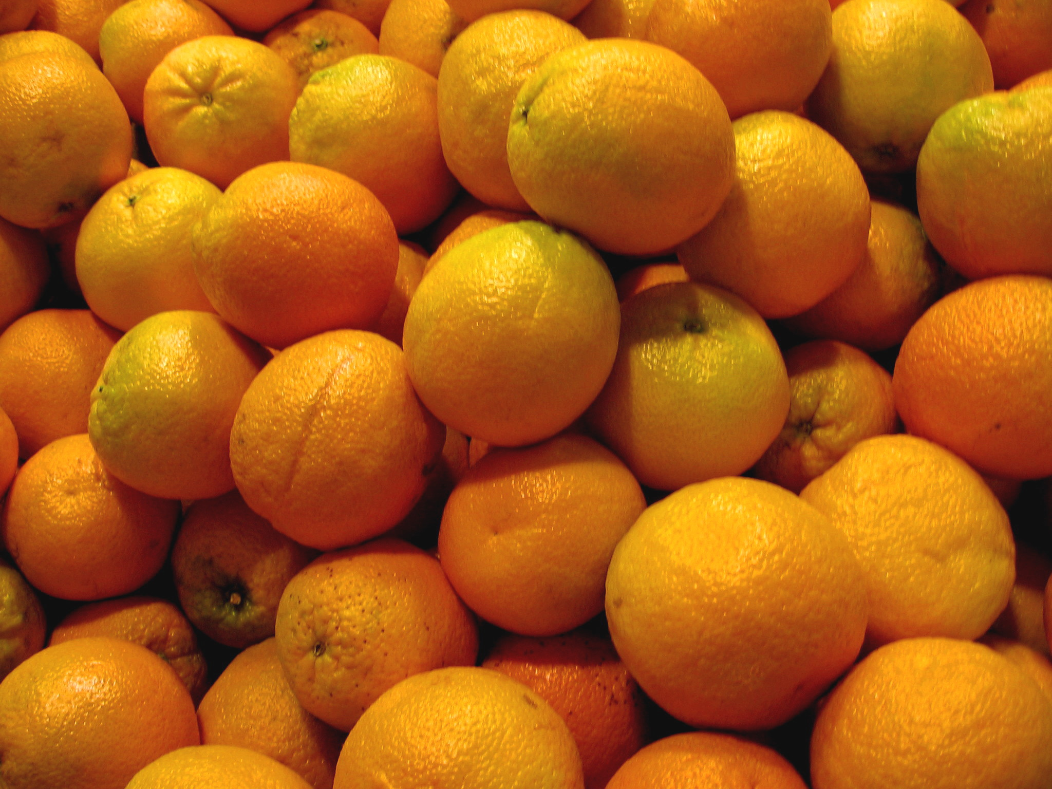 Pile_of_Oranges