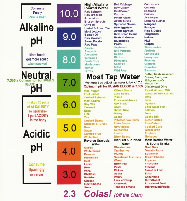 Ph Food Chart  JughandleS Fat Farm