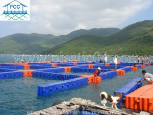 shrimp-farm