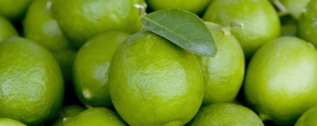 Limes – Why are there no seeds?